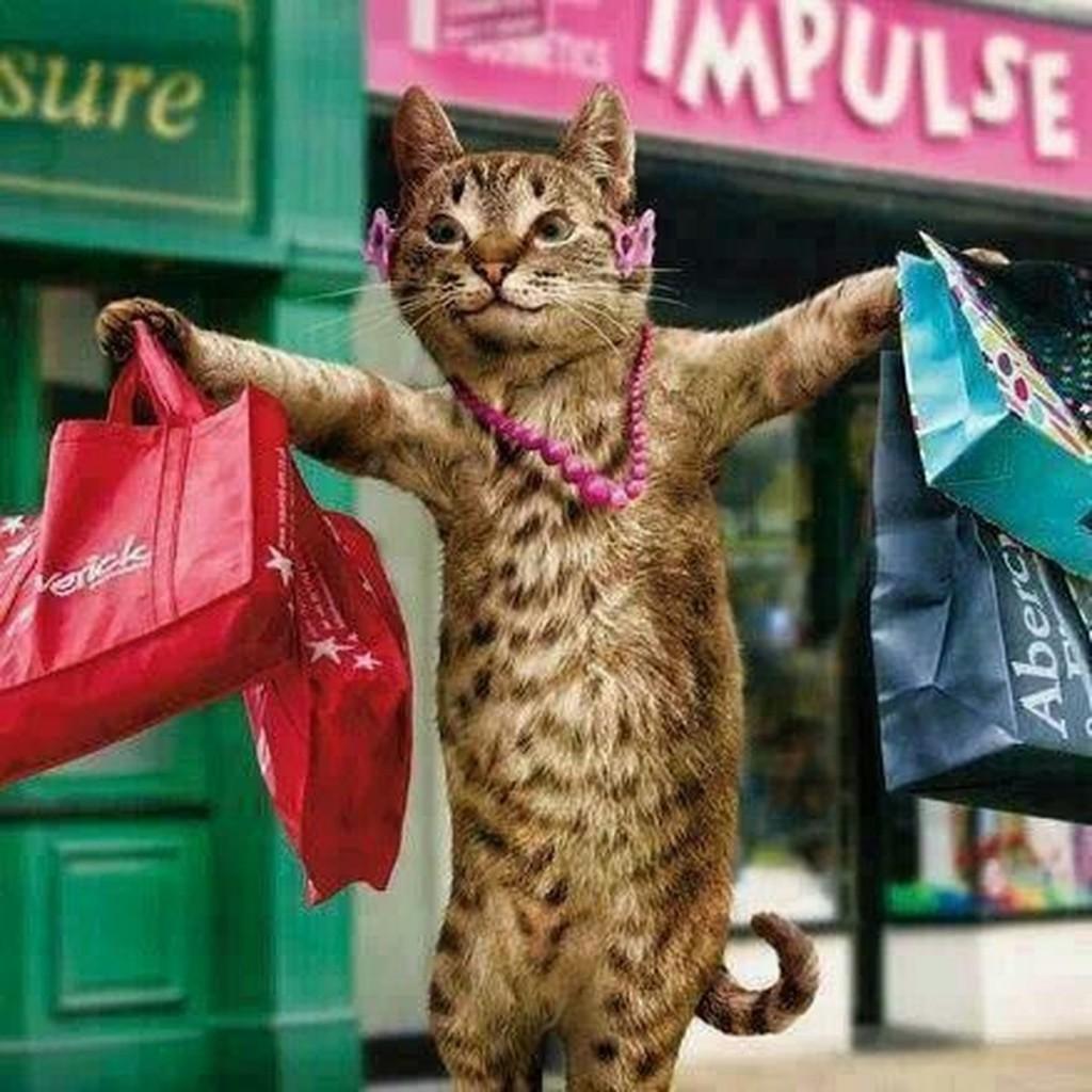 Прикольные картинки шоппинг